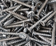 Wood screws Stock Photo
