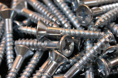 Wood Screws Stock Photography