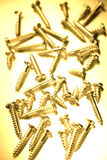 Wood screws. A close up of wood screws of varying lengths Stock Images
