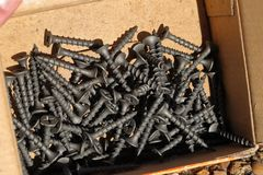 Wood screws in box, close up royalty free stock image