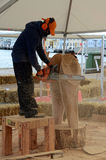 Wood Sculpture Artist. Sønderborg, Denmark - June 21, 2017: Artists at work with their chain saws at the International Wood Sculpture Festival 2017 Stock Photo