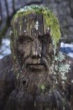 A sculpture of a scary face hidden in the woods. stock photography