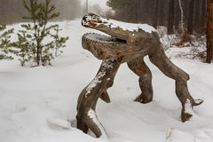 Wood sculpture in the Trans-Baikal National Park. Royalty Free Stock Photo