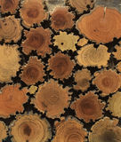 Wood Section Royalty Free Stock Images