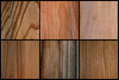 Wood set texture veneer Stock Images