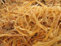 Wood Shavings. Close-up of wood shavings from a chain saw royalty free stock image