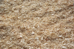 Wood shavings. For pets background texture Stock Image