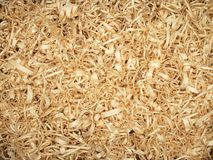 Wood shavings. Background of fresh wood shavings yellow color on the table royalty free stock photography