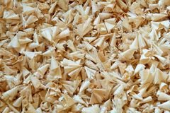 Wood Shavings. Maple shavings created from cutting hinge holes in custom cabinet doors royalty free stock images