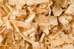 wood shavings Royaltyfri Foto