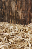 Wood Shavings Stock Photography