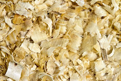 wood shavings Royaltyfria Foton