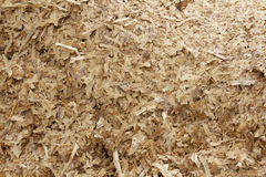 Wood Shavings Background Royalty Free Stock Photos