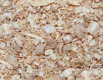 Wood shavings background Stock Photo