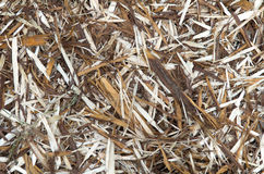 Wood Shavings Background. Background image of dark and light colored wood shavings Stock Images