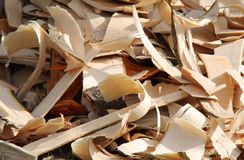 Wood Shavings. Royalty Free Stock Image
