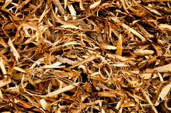 Wood shavings background Royalty Free Stock Image