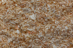 WOOD SHAVINGS BIOMASS Stock Image