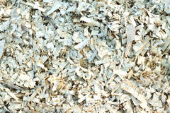 Wood shavings, chip Stock Photo