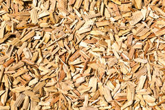 Wood shavings on the floor royalty free stock photo