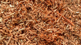 Wood shavings, sawdust background Royalty Free Stock Photo
