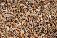 Wood Shavings Texture Stock Images