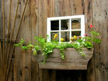 Wood shed and flower box Stock Images