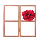 Wood shelf decorated with red rose flowers Stock Images