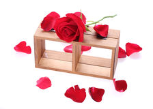 Wood shelf decorated with red rose flowers. On white background stock photos