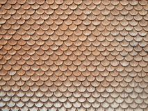 Shingle Wall. Wood shingle in Austria, state of Vorarlberg stock images