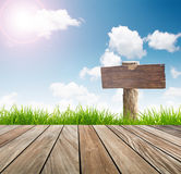 Wood sign ,fresh spring green grass with blue sky Stock Photos