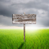Wood sign with green rice field and rainclouds in Thailand Royalty Free Stock Image