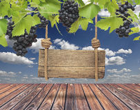 Wood sign, vineyard with blue sky Royalty Free Stock Photo