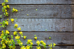 Wood Sign With Yellow Flowers Background Stock Photo