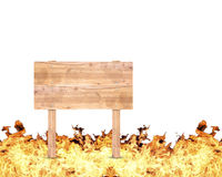 Wood Signs the Flame Royalty Free Stock Photo