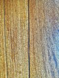 Wood Skin. Texture Stock Image