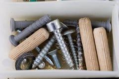 Wood skruvar och skruvar i en plast- seminariumbehållare Montör a Royaltyfri Fotografi