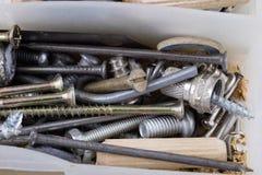 Wood skruvar och skruvar i en plast- seminariumbehållare Montör a Arkivbild