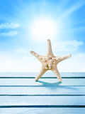 Wood Sky Starfish Background Royalty Free Stock Photo