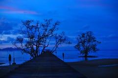 Wood skymning för blå himmel för port och för solnedgång på stranden Royaltyfri Foto