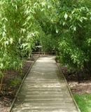Wooden slatted pathway surrounded by bamboo plants. Wooden pathway through the woods surrounded by trees.  Dappled sunshine Stock Photo