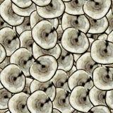 Wood slice texture tree circle cut seamless pattern. Wood slice texture tree circle cut raw material seamless pattern photo collage vector illustration