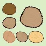 Wood slice texture tree circle cut raw material set detail plant years history textured rough forest vector illustration Royalty Free Stock Photo