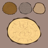 Wood slice texture tree circle cut raw material set detail plant years history textured rough forest vector illustration Royalty Free Stock Photography