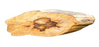 Wood slice on white background. Royalty Free Stock Photo