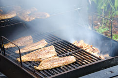 Wood smoked smoking mullet fish Royalty Free Stock Images