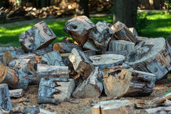 Wood split and chopped. Stack of wood split and chopped for construction, heating or fuel Royalty Free Stock Photography