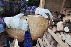 Wood is split Stock Images