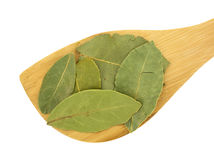 Wood spoon with basil leaves Royalty Free Stock Photography