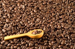Wood spoon on coffee beans. A little wood spoon on coffee beans Royalty Free Stock Photos